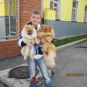 Елена Морозова - Тюмень, Тюменская обл., Россия, 43 года на Мой Мир@Mail.ru