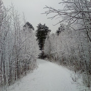 Наталья Ивановна Ж. on My World.